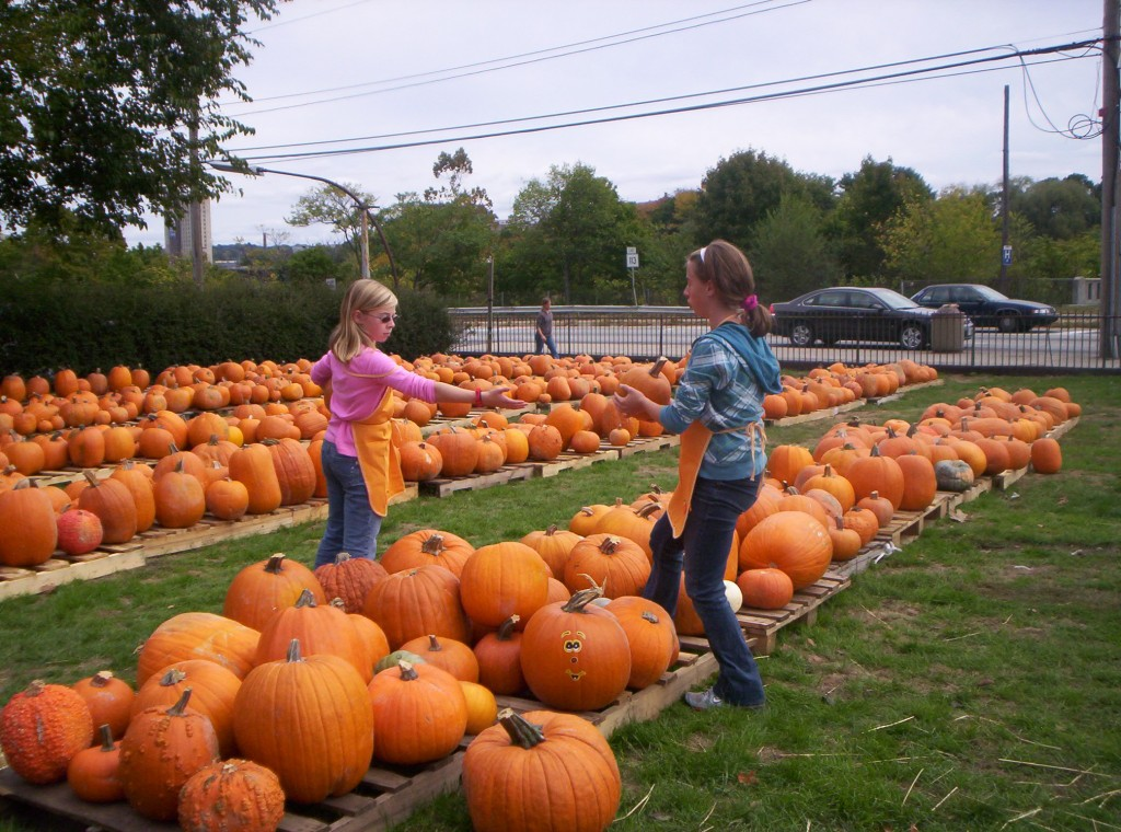 Pawtucket Church Pumpkin Patch